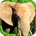 大象模拟  免验证版